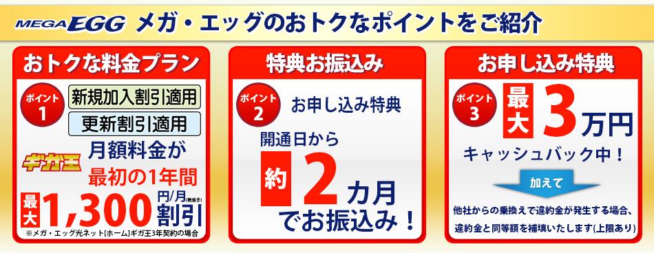 メガエッグ光 最大40,000円キャッシュバックキャンペーン